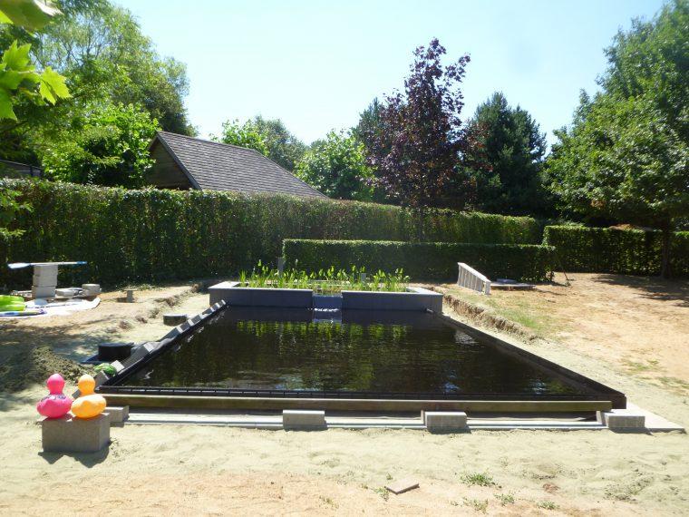 strakke zwemvijver met verhoogde plantenzone